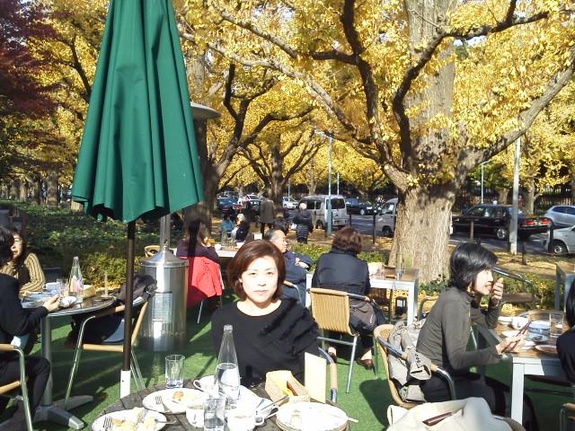 休日の銀杏並木