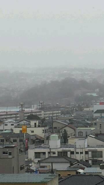 三島も雪が…